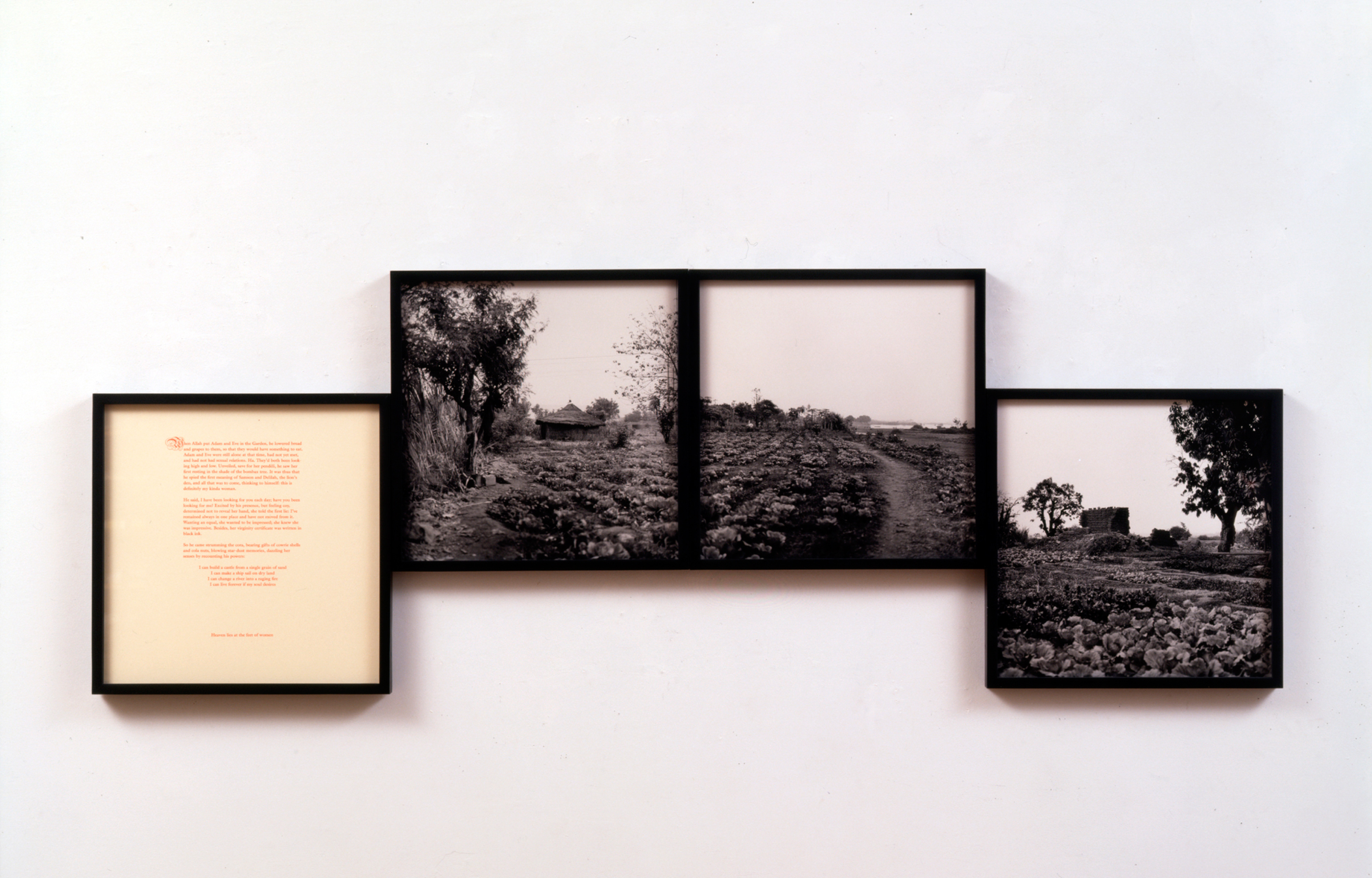 Galerie Barbara Thumm \ Carrie Mae Weems: In the Garden (CMW-93-002)) \ In the Garden (1993)
