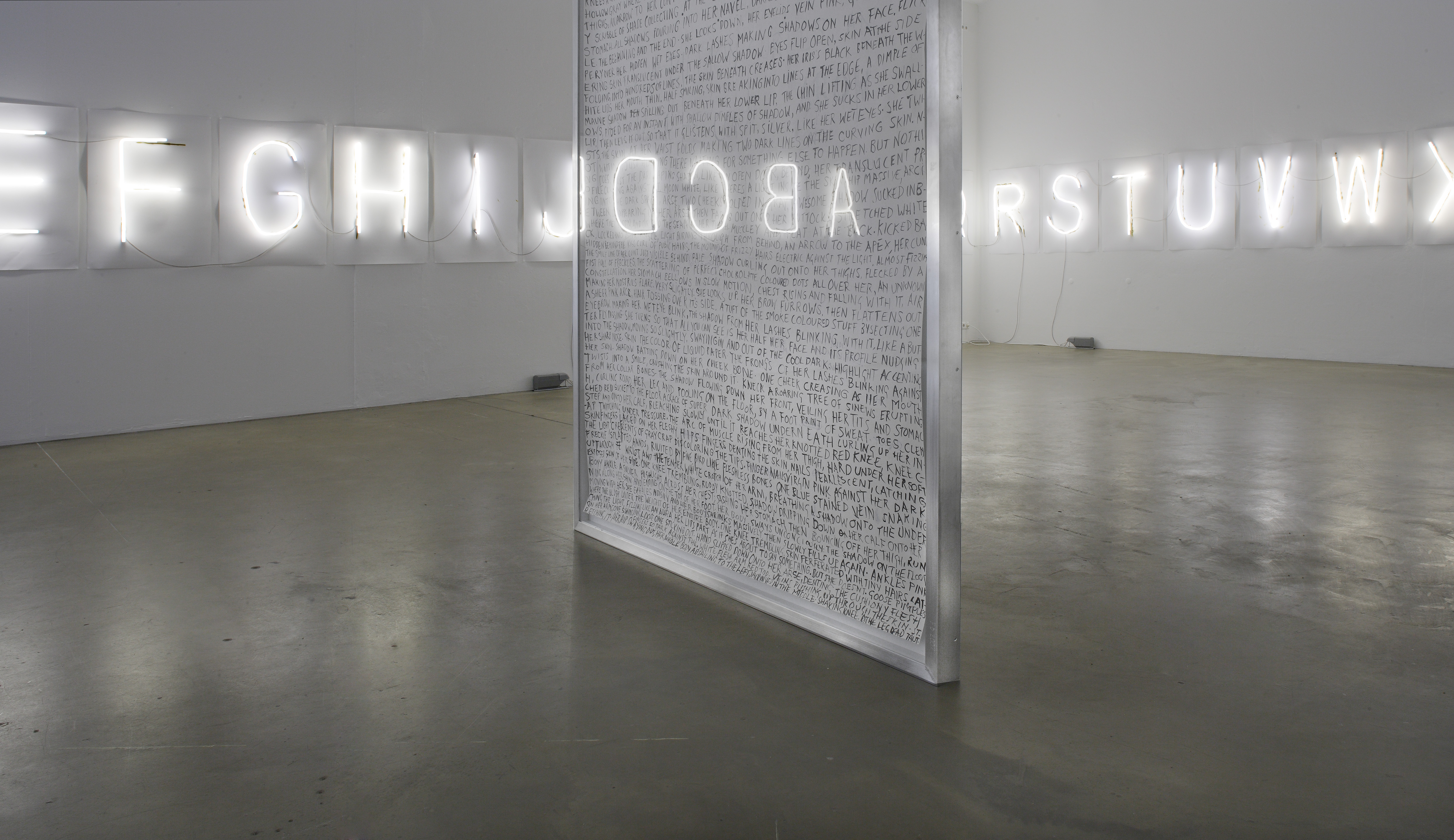 Galerie Barbara Thumm \ Fiona Banner aka The Vanity Press- Every Word unmade